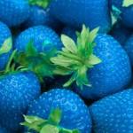 fresa_azul